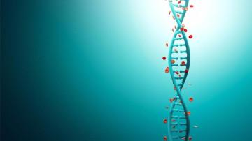 DIAGNOSI GENETICA DI PREIMPIANTO (PGD)