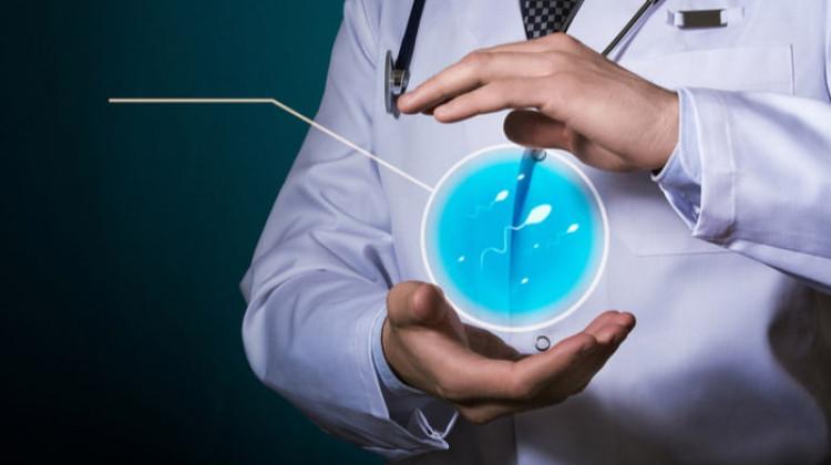 Sperm Sayısı Nasıl Artırılır?
