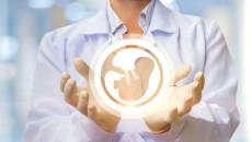 Tüp Bebek Tedavisinde DHEA