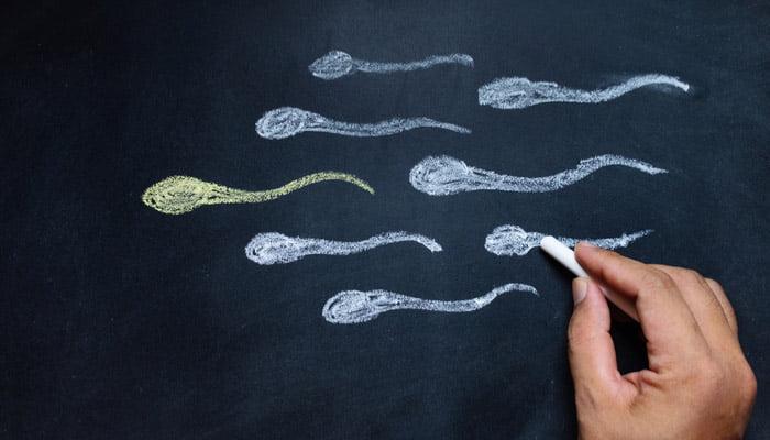 sperm sayısı nasıl artar